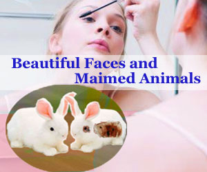 Beautiful Faces and Maimed Animals