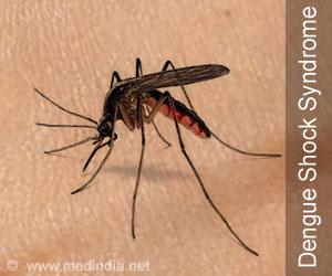 Dengue Fever Continues to Plague Bangalore