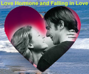 Love hormone and falling in love medindia