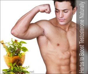 ayurvedic herbs for testosterone