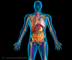 Some Myths and Realities About Your Body
