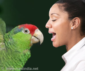 Human Speech and Bird Song - The Dopamine Link