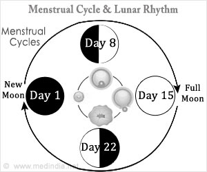 Menstrual and Lunar Cycles may be Linked