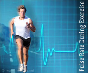 Heart Rate (Pulse Rate) During Physical Exertion