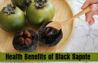 sapote fruit are fruit cups healthy
