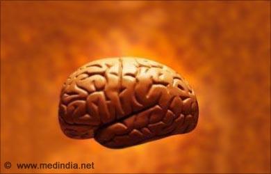 Health Benefits of Walnuts: Brain