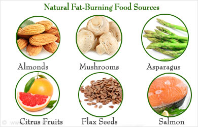 What Foods To Eat To Loss Belly Fat