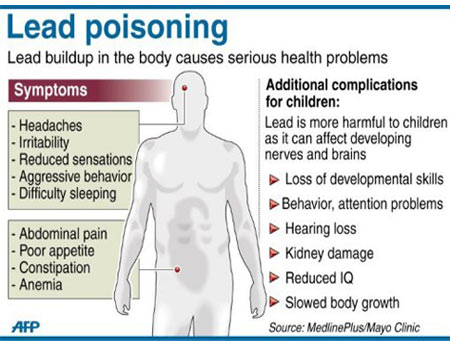 essay on the effects of lead poisoning