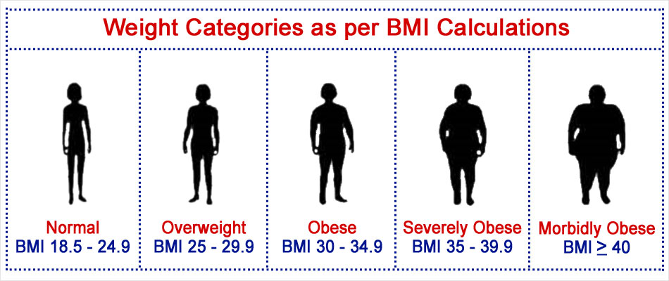 normal body fat percentage for male and female