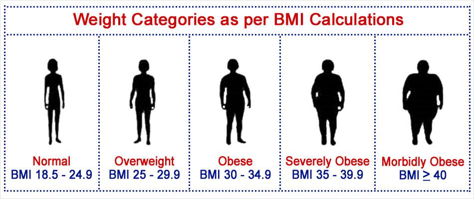 body fat percentage vs fat mass