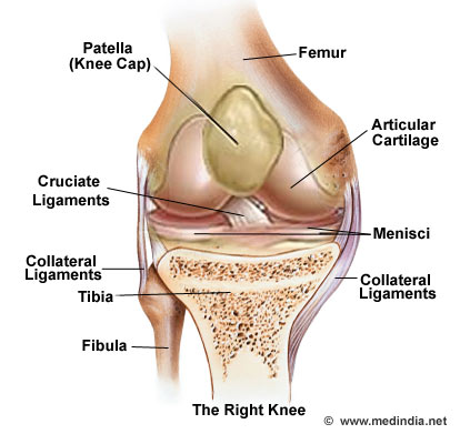 Osteochondritis dissecans causes risk factors symptoms diagnosis if the broken fragment does not get jammed between the moving parts of a joint there may not be any symptoms at all surgical repair is required otherwise ccuart Images