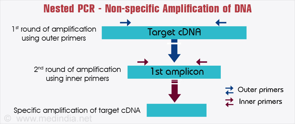 a study of pcr or polymerase chain reaction For polymerase chain reaction (pcr), why is the knowledge of flanking the region surrounding the target site necessary, but not the actual nuc what are the applications of pcr (polymerase chain reaction.