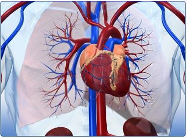 Qué son medicación para la hipertensión ?